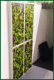 Esempio 3 di Giardino Verticale per Fashion Garden