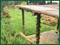 Micro gallery per Fashion Garden fornitura piante 002