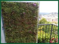 Micro gallery per Fashion Garden giardini vertcali 002