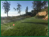 Micro gallery per Fashion Garden impianti di irrigazione 001