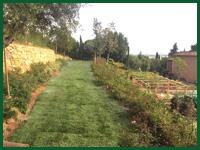 Micro gallery per Fashion Garden impianti di irrigazione 003